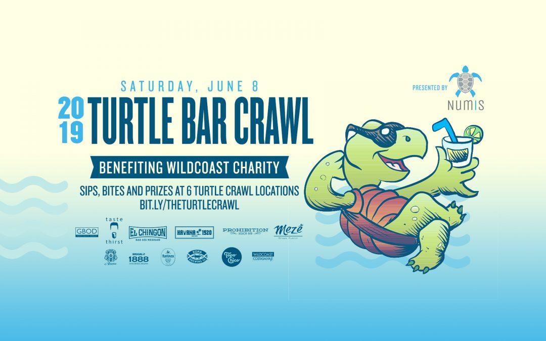 2019 Turtle Crawl